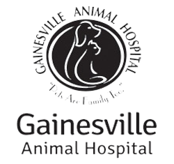 Gainesville Animal Hospital